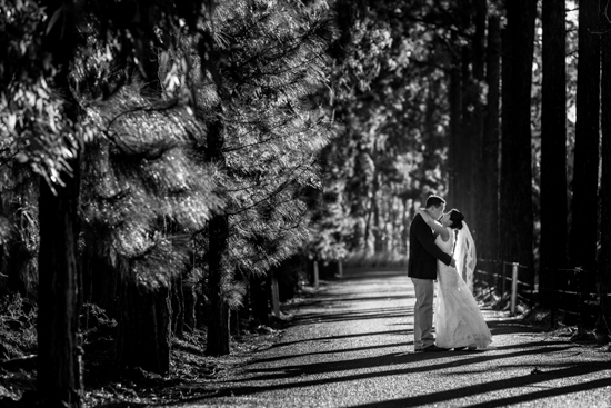Location Shots - Tablelands Wedding